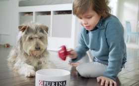 ANDREA MANDEL | Purina | Big Moments