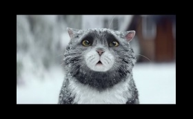Sainsbury's OFFICIAL Christmas Advert 2015 – Mog's Christmas Calamity