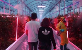 ADIDAS – Your Future is Not Mine